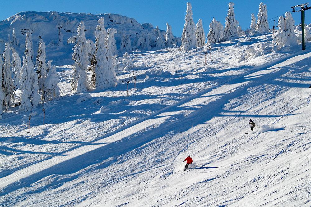 Winter-Arber_TI-Lam.jpg