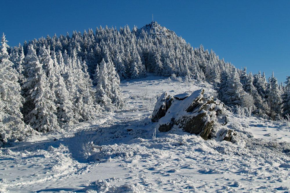 Winter-Osser_TI-Lam-1.jpg