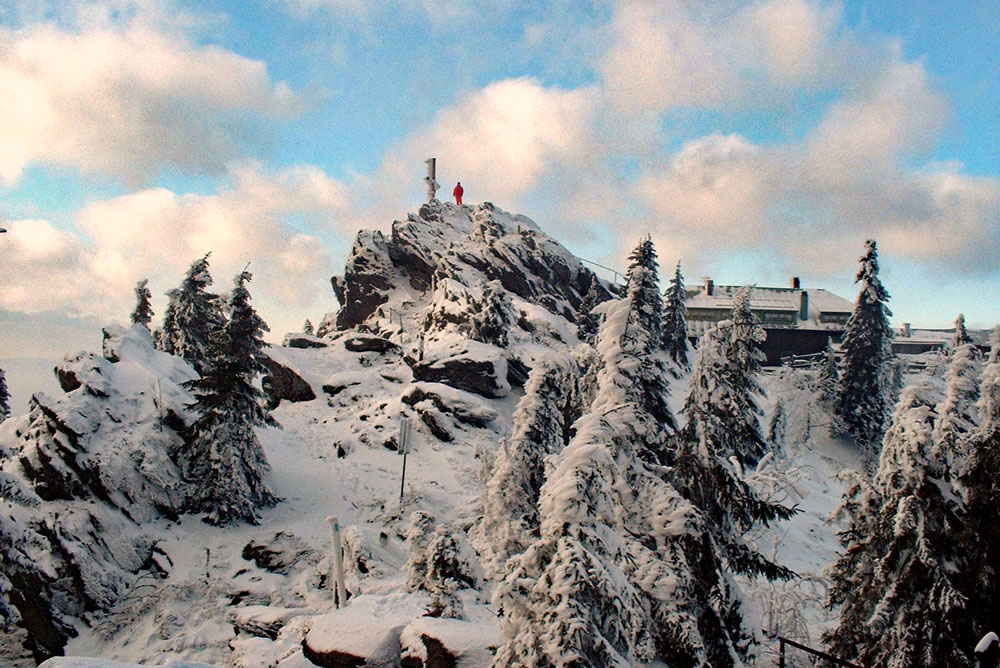 Winter-Osser_TI-Lam-2.jpg