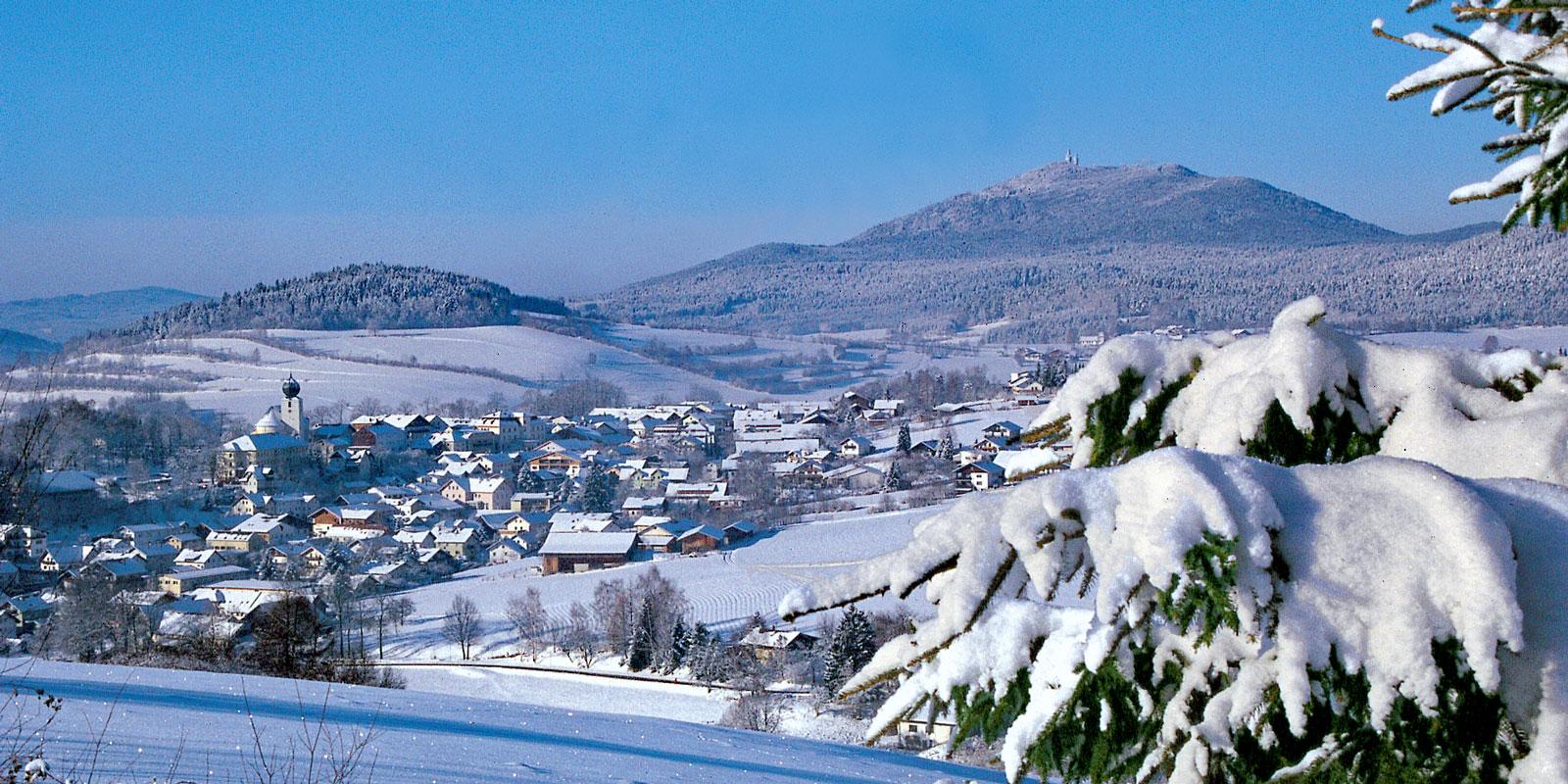 Winter-Lam_TI-Lam-1.jpg